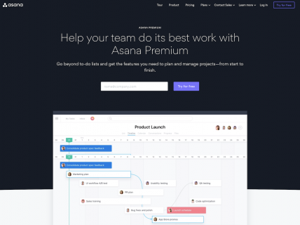 Screenshot of the Premium page from the Asana website.