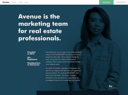 Screenshot of the About page from the Avenue website.
